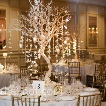 Event Design Manzanita Tree